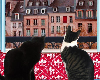 Blank Cards (5), Cat Art, Greeting Cards, Note Cards, Note Card Stationery, Paris, Photo Notecards, Deborah Julian