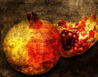 Pomegranate Fine Art Print 5x7