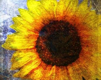 Sunflower Fine Art Print5x7
