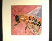Bee, an original framed watercolor painting