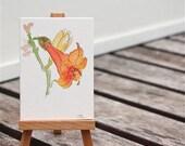 orange tuberose watercolor painting, tiny, ACEO, stream, water,  fine art original, gift
