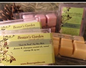 Scented Soy Wax Melts- Waffle Bars- Home and Living- Citronellla- Lavender- Peppermint- Candles- Everyday is Earth Day!