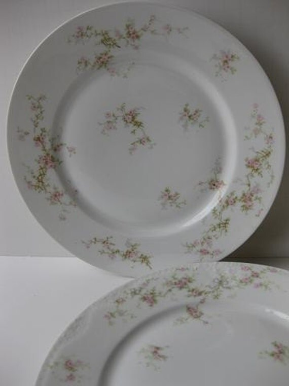 Vintage Theodore Haviland Limoges Marie & Lucille Pink and Green Floral Dinner Plates Set of Two