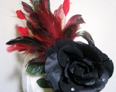 Black Rose Fall with Red Feathers