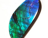 RESERVED FOR SWITMARTINI Ammolite - Stabilized - Bright Blue Green Organic Designer Cabochon - Big Size 19 carats