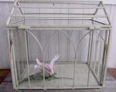 """FINAL SALE- Vintage  """"Wardian"""" Glass Case/Terrarium"""