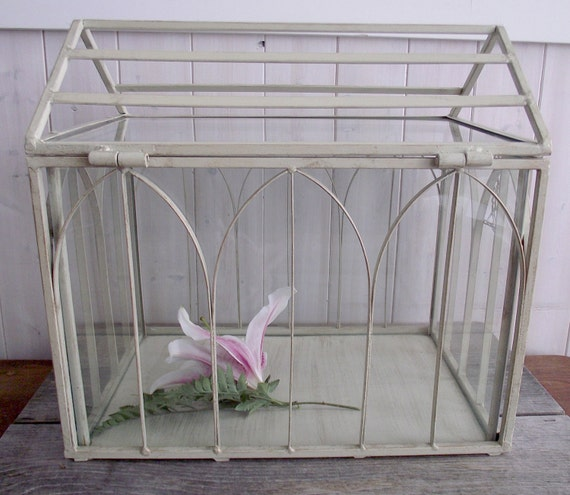 "FINAL SALE- Vintage  ""Wardian"" Glass Case/Terrarium"