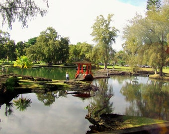 Lili'uokalani Park Hilo Hawaii   P-10