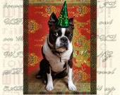Boston Terrier Birthday and Celebrate Handmade Cards Set of Two