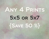 Any Four 5x5 or 5x7 fine art prints by Regan Daniels Save Fifty Percent Free Shipping