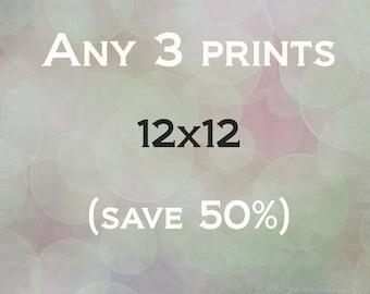 Any 3 12x12 prints - fits popular Ikea Ribba Frames - save 50%