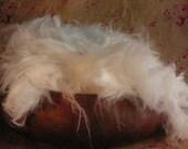 Sale - Michigan Raised Pure German Angora Rabbit Fiber -  Natural White 4 ounces