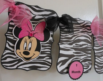 Minnie Mouse Zebra with Pink Polka Dot 1st Birthday Petite Party Package -