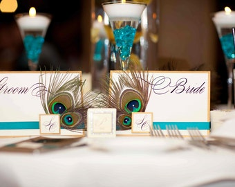 Double Peacock Feather Bride & Groom Signs