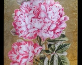 Pink Carnations Decoupage Under Glass Plate