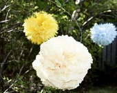 RESERVED -CUSTOM ORDER - Your Color Choice -10 Piece Paper Pom Set
