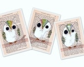The pistachio sisters - 3 card stock prints of  owls on vintage paper in a delicious bite size 4x6 print---