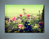 "Granada Through Roses - (Lehan) Lomo PHOTO .. 8"" x 10"""