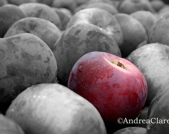 Snow White, The Red Apple, 5x7, Fine Art Photograph, Kitchen, Food, Farm, Fruit Photo, Picture, Photography, Decor