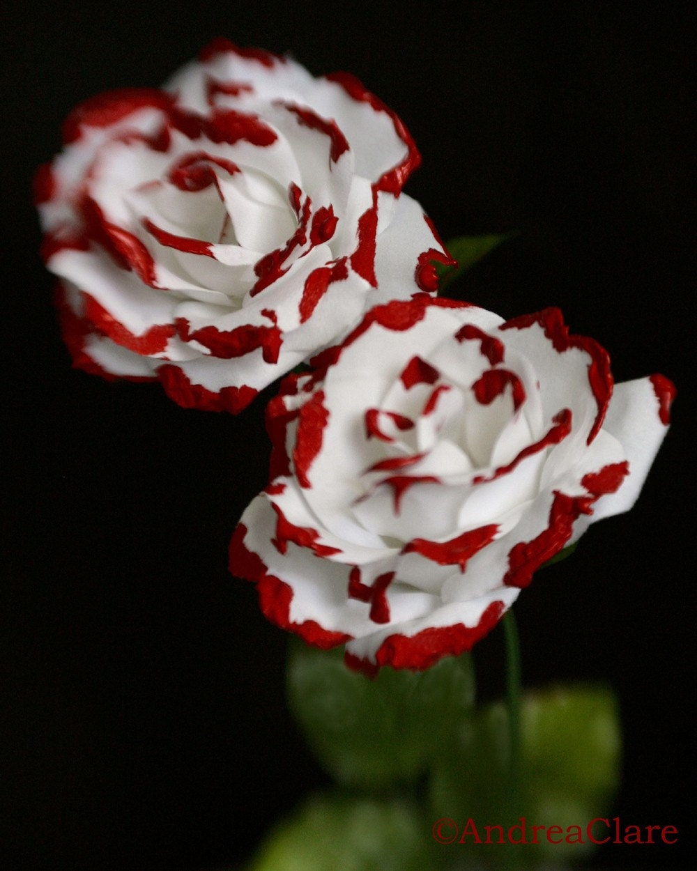 Queen Of Hearts Paint Blood Red Roses