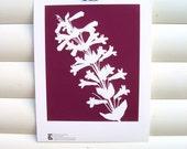 Flower Garden Art Print 10x8 - Plum Purple Penstemon - Modern Botanical Art Print Floral Nature Pretty Cottage Garden Papercut Design