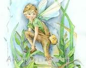 "Fairy Art...""Sage""...8x10 print"