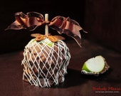 Gourmet Chocolate Turtle Apple