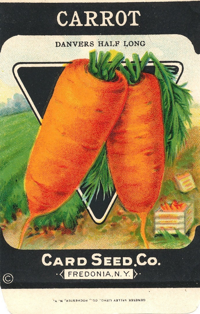 Vintage Carrot Seed Packet Free Shipping