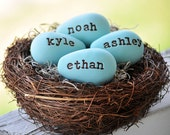 Family Nest, new baby, baby shower, new baby, wedding, anniversary,easter,mothers day, bird nest and  eggs in aqua