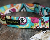 "Dog Collar ""Park Row Paisley""  Modern Floral Paisley Turquoise Dog Collar"