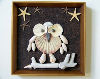 "Cute Seashell Owl Wall Decor - Natural Seashells & Starfish Stars - Woodland Handmade Original - Framed - ""The Midnight Owl"""