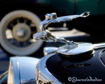 1933 Buick Hood Ornament - Metallic Fine Art Photo Print - Elegant Black and Silver Decor for Home or Office