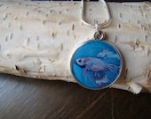 Betta Fish Oil Painting Pendant Necklace