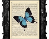 Dancing Blue BUTTERFLY Print on antique book page BUTTERFLY Art Print vintage dictionary page