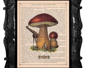 Upcycled Dictionary Page Upcycled Book Art Upcycled Art Print Upcycled Book Print Vintage Art Print Giraffe Mushroom Peek A Boo