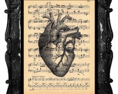 Upcycled Dictionary Page Upcycled Book Art Upcycled Art Print Upcycled Book Print Vintage Art Print Anatomical Black Heart Music Sheet