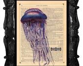 Blue Jellyfish art print - blue jellyfish wall art - jellyfish print - jellyfish dictionary antique book page jellyfish art print