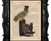 Camera OWL Art Print Clock Camera Octopus and Owl antique book page artistic book art print vintage book print