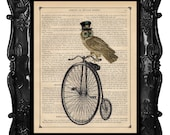 Bicycle Art Print Owl Bicycle Bike Print beautifully upcycled print dictionary page book art print steampunk