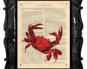 Coral Crab Print Vintage Art Print Red Crab Print Upcycled Dictionary Page Antique Book Page Art Print