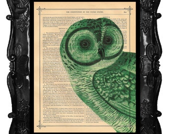 Christmas Green Owl Upcycled Dictionary Page Upcycled Book Art Upcycled Art Print Upcycled Book Print Vintage Art Print