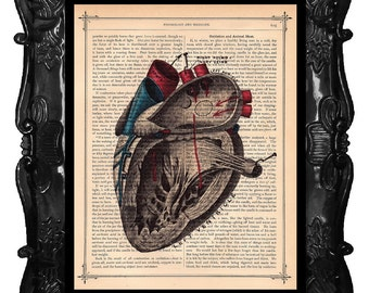 ANATOMICAL HEART illustration human anatomy vintage human heart book page art print on dictionary print black red blue ANATOMICAL Heart