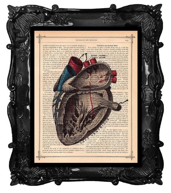 ANATOMICAL HEART illustration human anatomy vintage human heart book page art print on dictionary print black red blue ANATOMICAL Heart