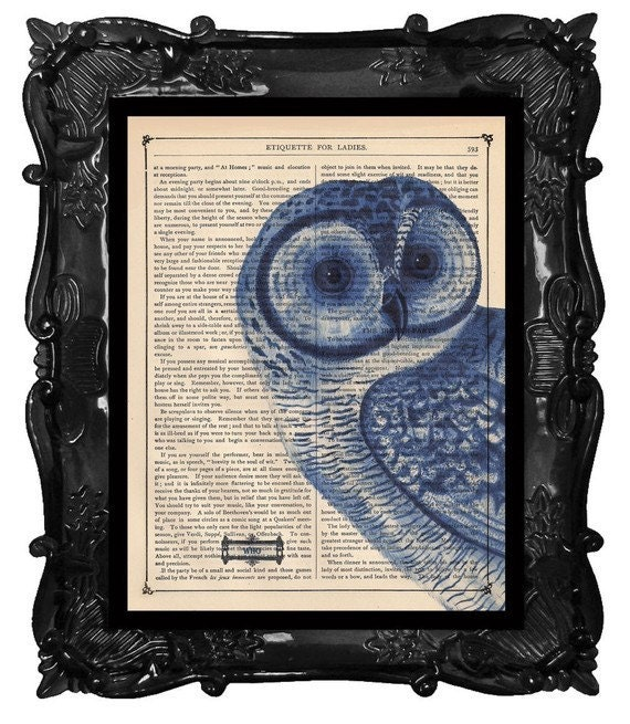 Beautiful Blue Owl Print - owl on antique book page or music page, your choice blue owl wall art poster