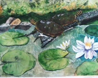 Turtles Watercolor Print Signed Limited Edition
