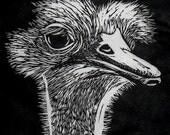 Ostrich Linocut Print
