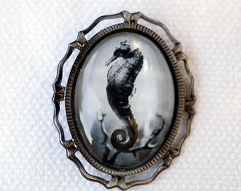 Seahorse jewelry, Seahorse brooch, Black and white photography, Nature art jewelry, Photo art jewelry, Silver brooch, Ocean photography