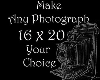 16 x 20 size photograph, You choose the image, Fine art photography, Large wall art, Home decor, Art prints, Animal photography, Wall art
