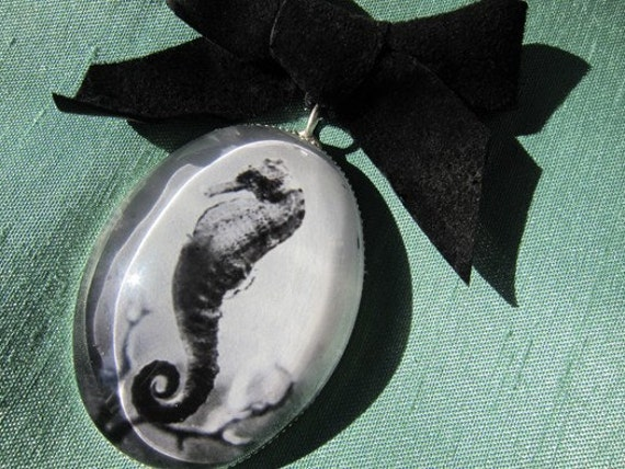 Seahorse Jewelry- Velvet bow art brooch featuring black and white photograph of a seahorse in an antiqued silver color metal setting