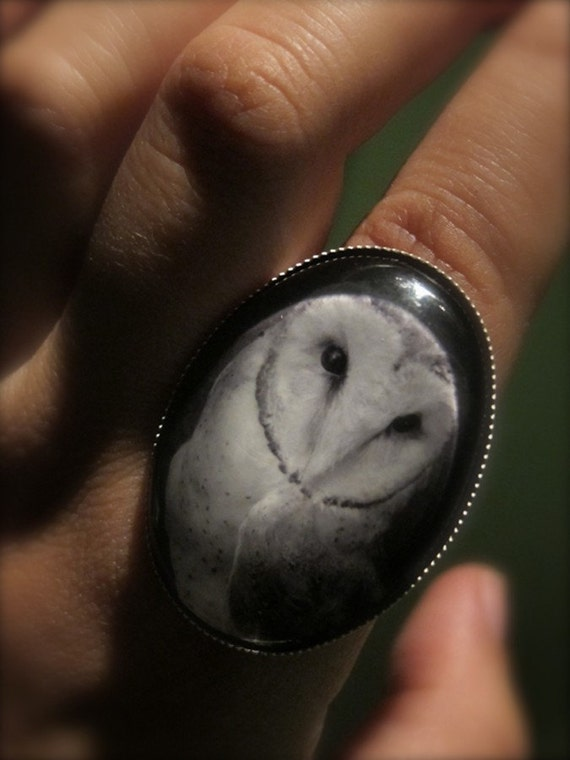 Owl Ring Jewelry- Antique silver toned adjustable ring. Black and White Art Photograph Under Glass